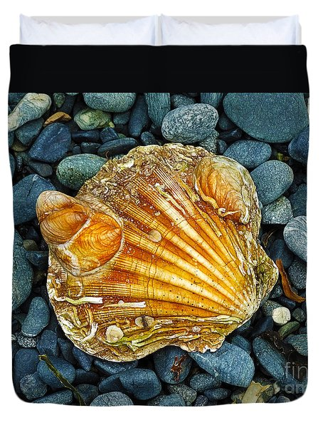 Weathered Scallop Shell Duvet Cover by Judi Bagwell