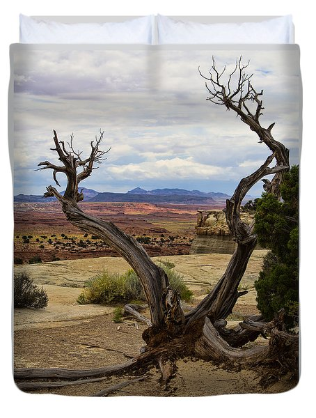 Weathered Duvet Cover by Steven Parker