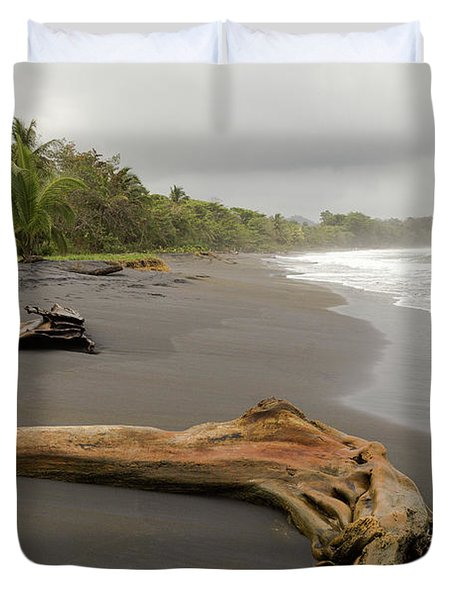 Weathered Tree On Costa Rica Beach Duvet Cover