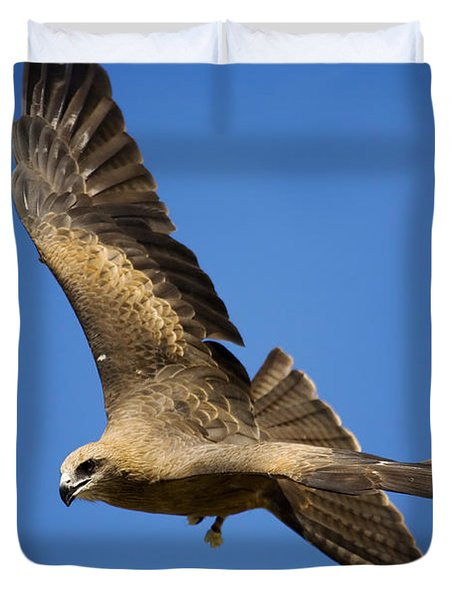 Wedgetail Eagle Flight Duvet Cover by Mike  Dawson