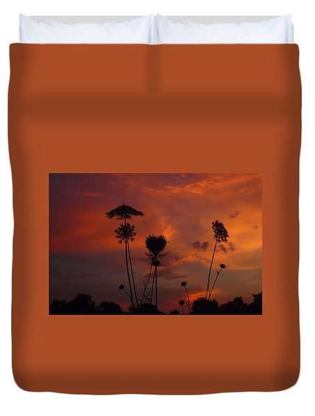 Weeds In The Sunrise Duvet Cover by Kathryn Meyer