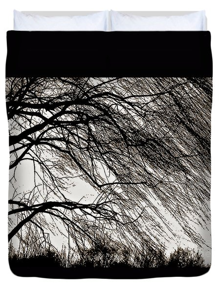 Weeping Willow Tree  Duvet Cover by Carol F Austin