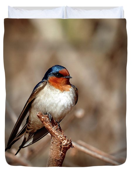 Welcome Swallow Duvet Cover