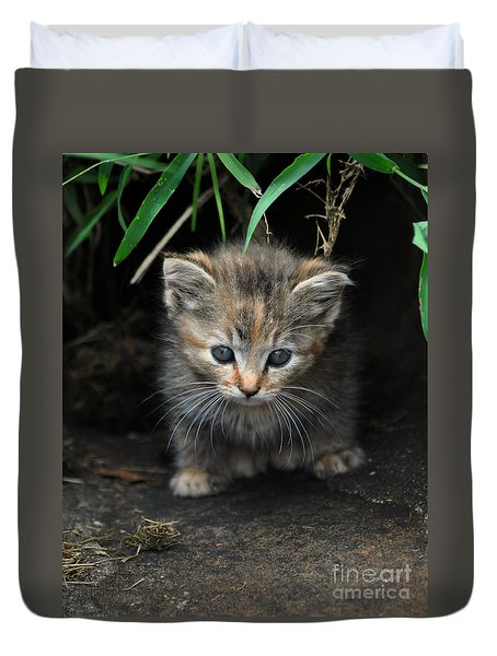 Welcome To The Jungle Duvet Cover by Eric Liller