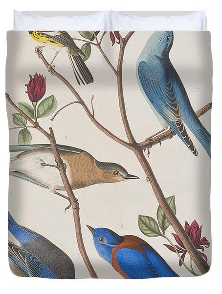 Western Blue-bird Duvet Cover