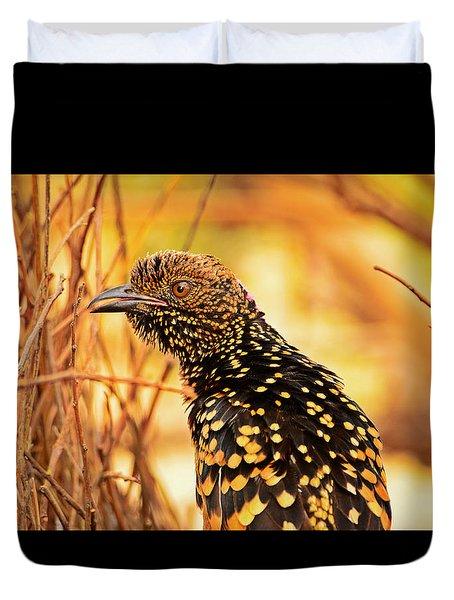 Western Bowerbird Duvet Cover by Racheal  Christian