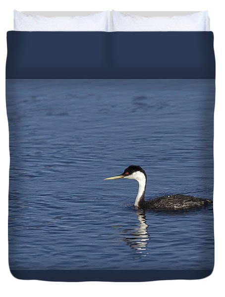 Western Grebe In Late Afternoon Light Duvet Cover