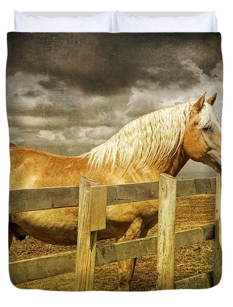 Western Horse In Alberta Canada Duvet Cover by Randall Nyhof