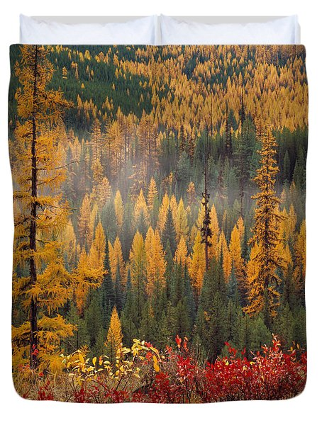 Western Larch Forest Autumn Duvet Cover