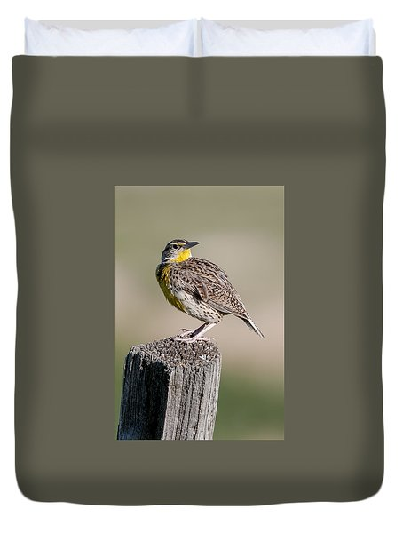 Duvet Cover featuring the photograph Western Meadowlark by Gary Lengyel