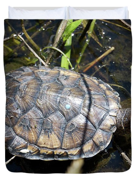 Western Pond Turtle, Actinemys Marmorata Duvet Cover