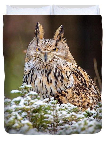 Western Siberian Owl Duvet Cover