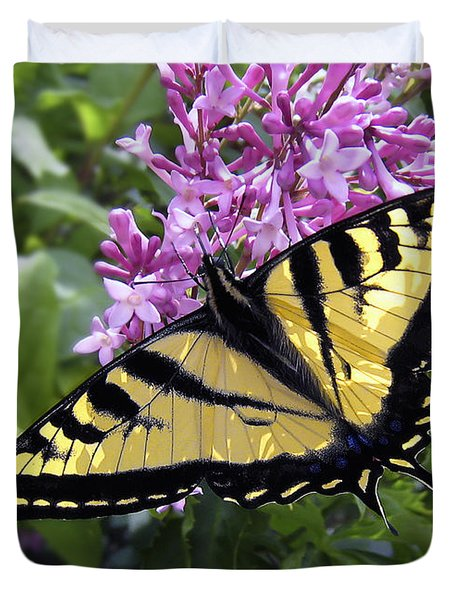 Western Tiger Swallowtail Butterfly Duvet Cover by Daniel Hagerman