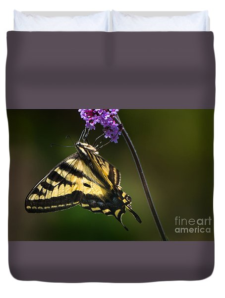 Western Tiger Swallowtail Butterfly On Purble Verbena Duvet Cover