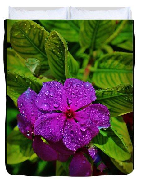 Wet And Wild Duvet Cover