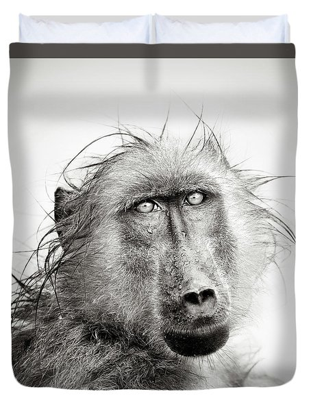 Wet Baboon Portrait Duvet Cover