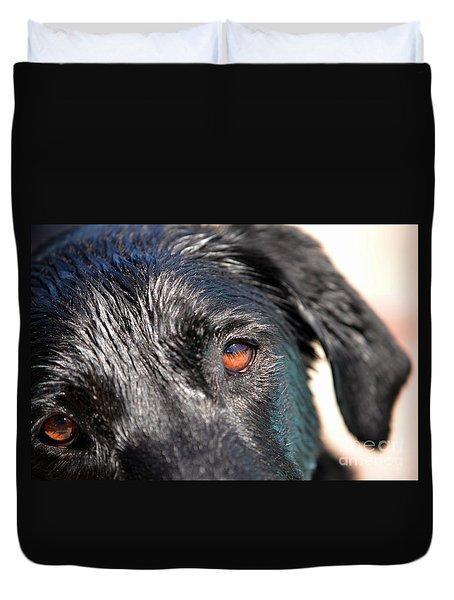 Duvet Cover featuring the photograph Wet Black Lab by Vivian Krug Cotton
