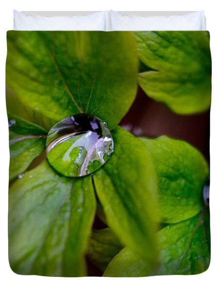 Duvet Cover featuring the photograph Wet Bleeding Heart Leaves by Brent L Ander