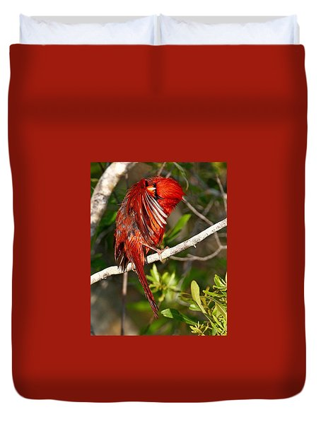 Wet Cardinal Duvet Cover