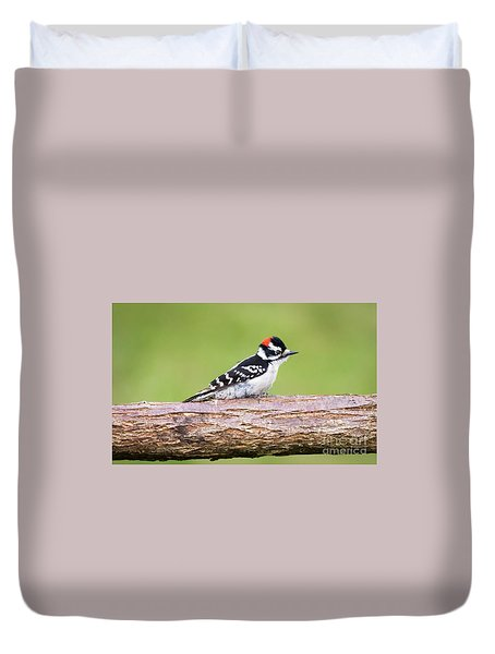 Duvet Cover featuring the photograph Wet Downy Woodpecker  by Ricky L Jones