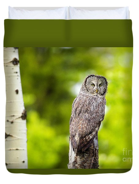 Duvet Cover featuring the photograph Wet Feathers by Aaron Whittemore