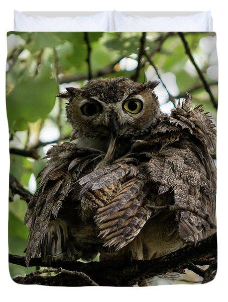 Wet Owl Duvet Cover