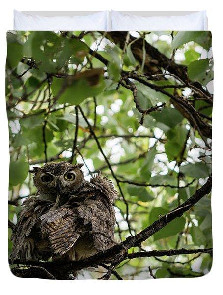 Wet Owl - Wide View Duvet Cover