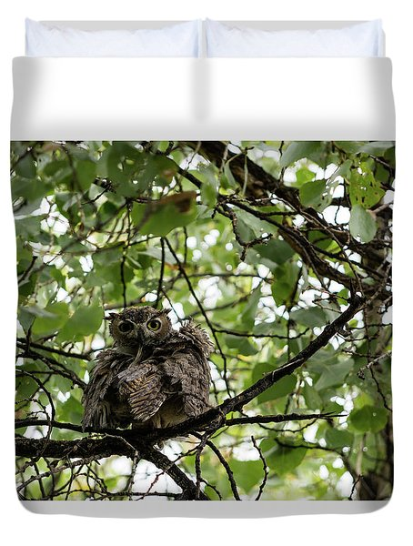 Wet Owl - Wide View Duvet Cover