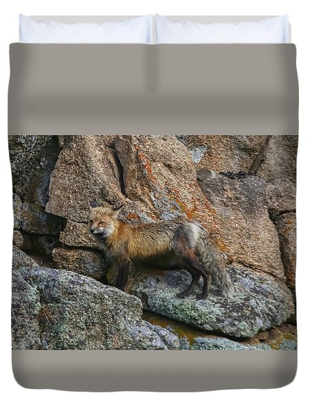 Duvet Cover featuring the photograph Wet Vixen On The Rocks by Perspective Imagery