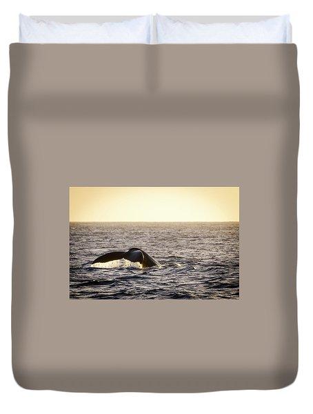 Whale Fluke Duvet Cover