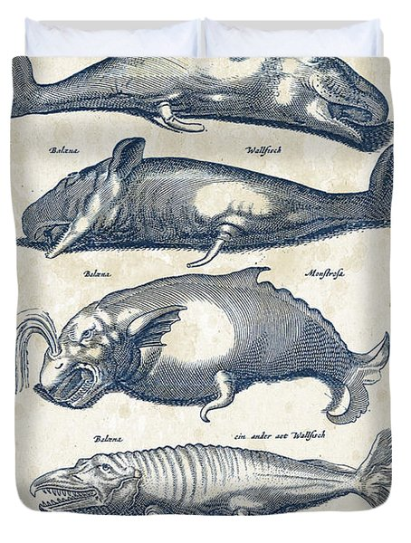 Whale Historiae Naturalis 08 - 1657 - 41 Duvet Cover by Aged Pixel