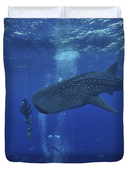 Whale Shark And Diver, Maldives Duvet Cover by Mathieu Meur