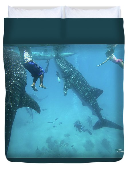 Whale Sharks Duvet Cover by Tim Fitzharris