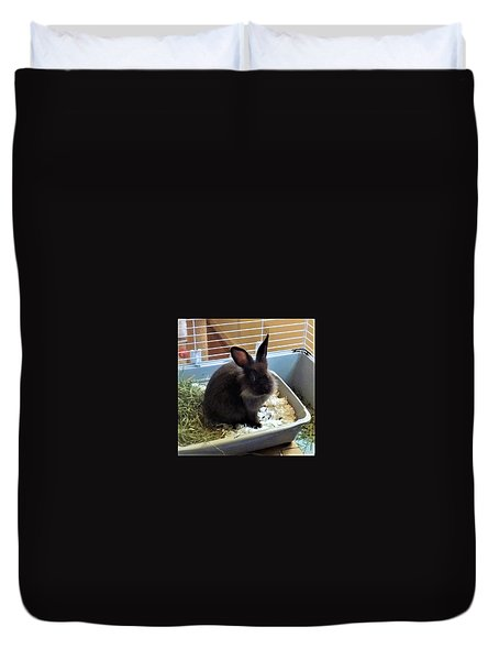 Duvet Cover featuring the photograph What? by Denise Fulmer