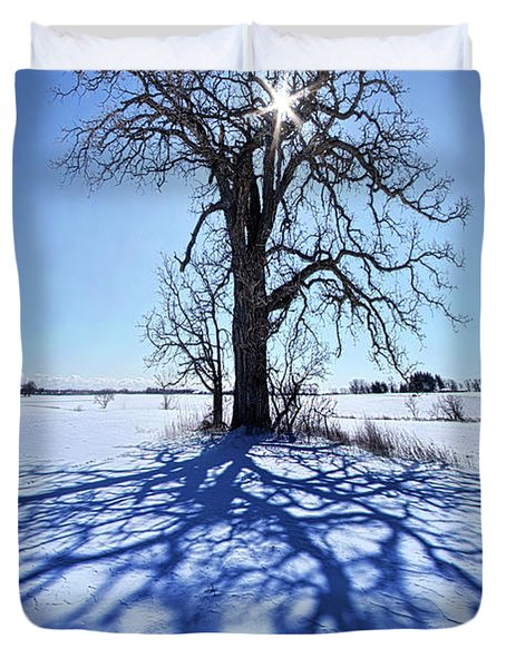 Duvet Cover featuring the photograph What I Am, What I Was, What I Will Be by Phil Koch
