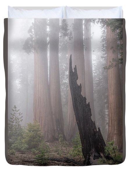 Duvet Cover featuring the photograph What Lurks In The Forest by Peggy Hughes