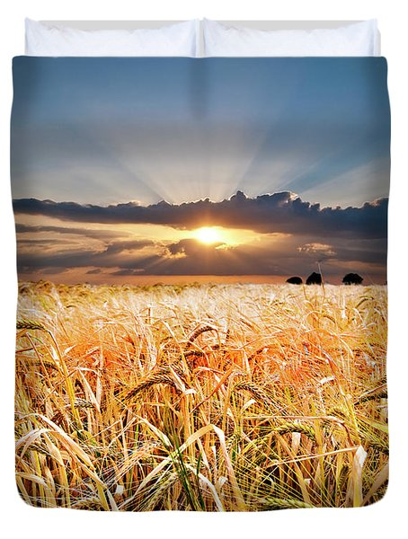 Wheat At Sunset Duvet Cover by Meirion Matthias