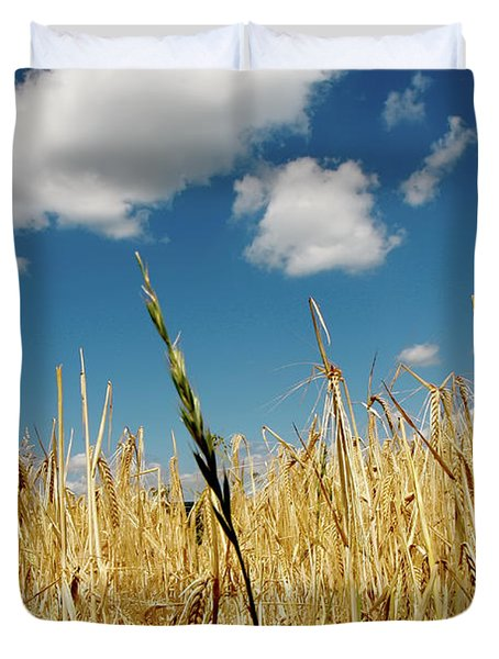 Duvet Cover featuring the photograph Wheat On The Rhine by KG Thienemann
