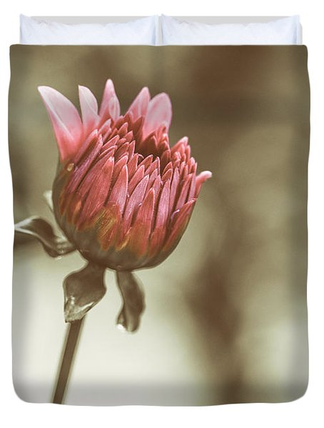 When We Were Young Duvet Cover