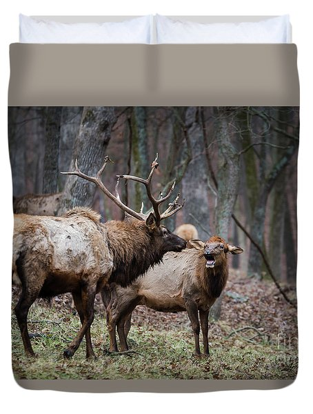 Duvet Cover featuring the photograph Where Have You Been? by Andrea Silies