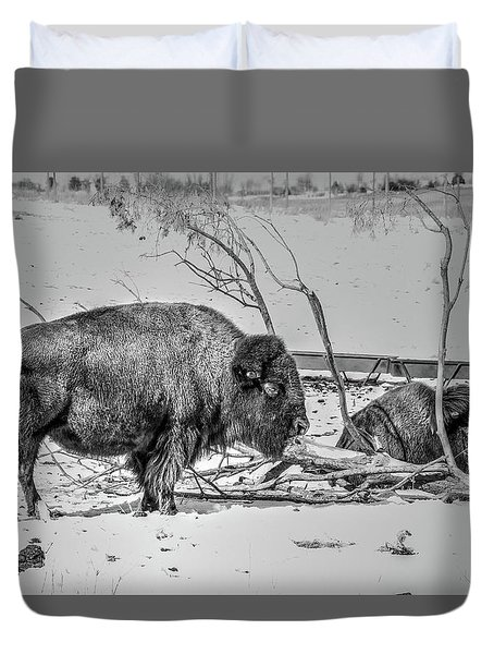 Where The Buffalo Rest Duvet Cover