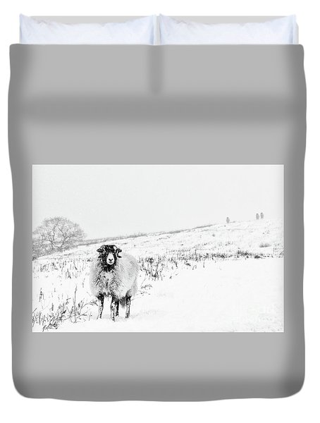 Which Way Is South? Duvet Cover by Janet Burdon