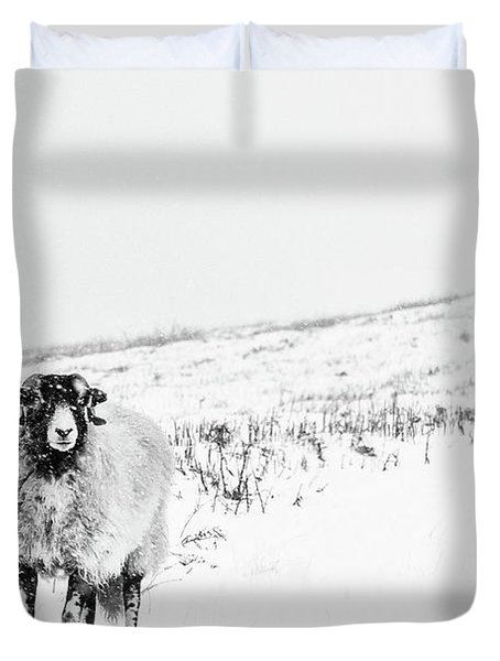 Which Way Is South? Duvet Cover