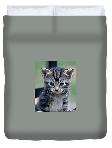 Whiskers Duvet Cover