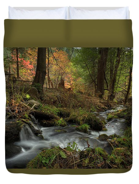 Whispers Of Autumn Duvet Cover by Sue Cullumber