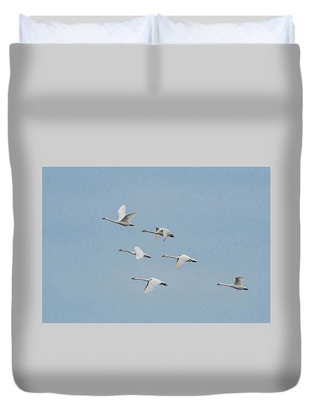 Whistling Swan In Flight Duvet Cover