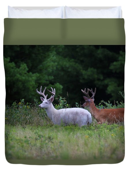 White And Brown Bucks Duvet Cover