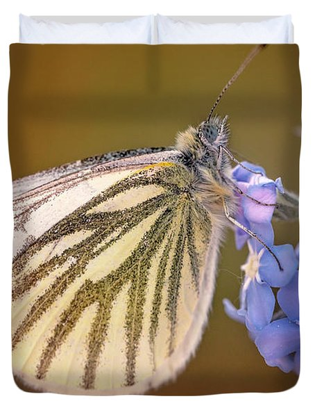 White And Creamy Butterfly On Forget Me Not Flower Duvet Cover