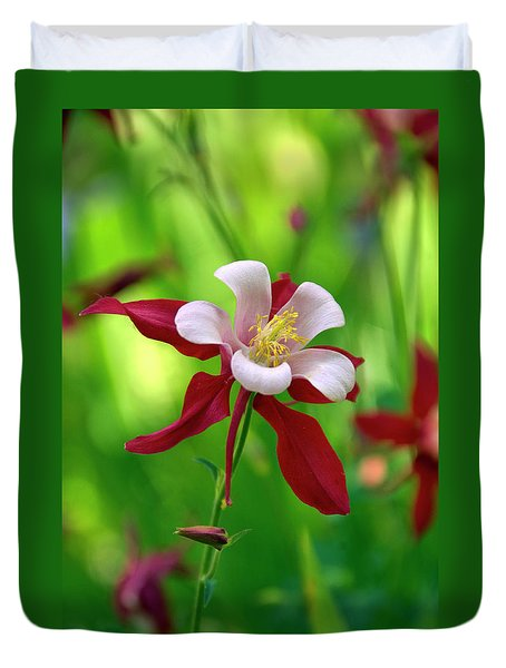 White And Red Columbine  Duvet Cover
