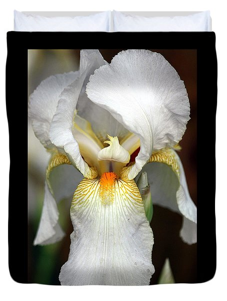 Duvet Cover featuring the photograph White Bearded Iris 2 by Sheila Brown